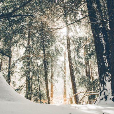 Saving Money In Winter